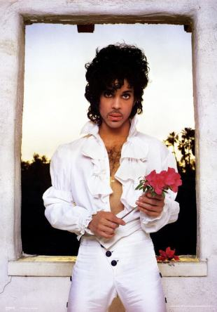 Prince flower