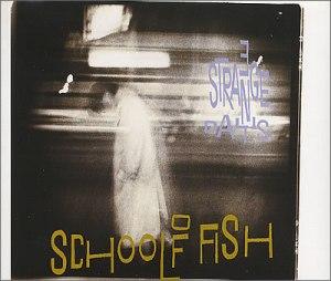 School Of Fish - 3+Strange+Days
